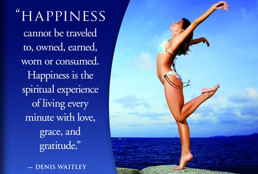 happiness cannot be traveled